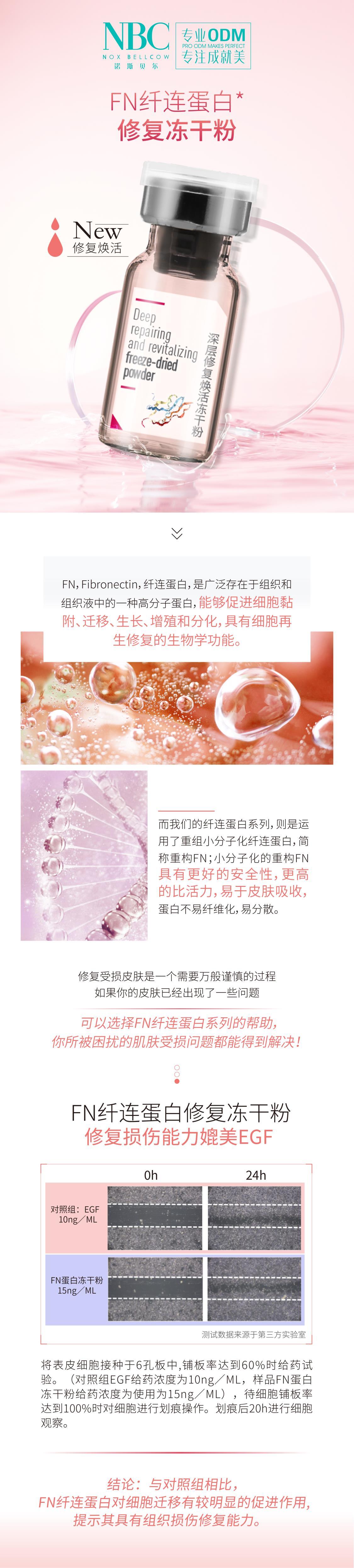 纤连蛋白修复冻干粉-01.jpg